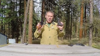 Concealed Carry:  .38 special vs. 9mm.