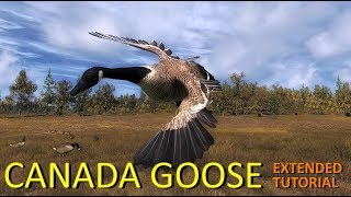 theHunter Canada Goose Extended Tutorial