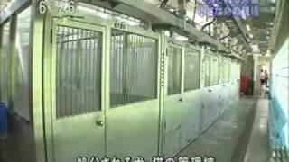 (映像)愛媛県動物愛護センター
