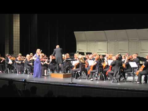 Brahms Violin Concerto in D major, Op. 77 - Allegro non troppo