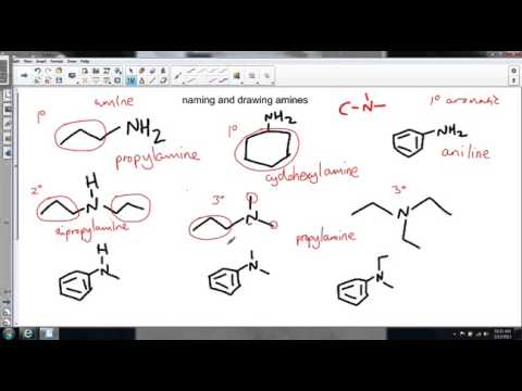 Naming And Drawing Amines