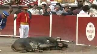 El toro se mata solo en Aguascalientes