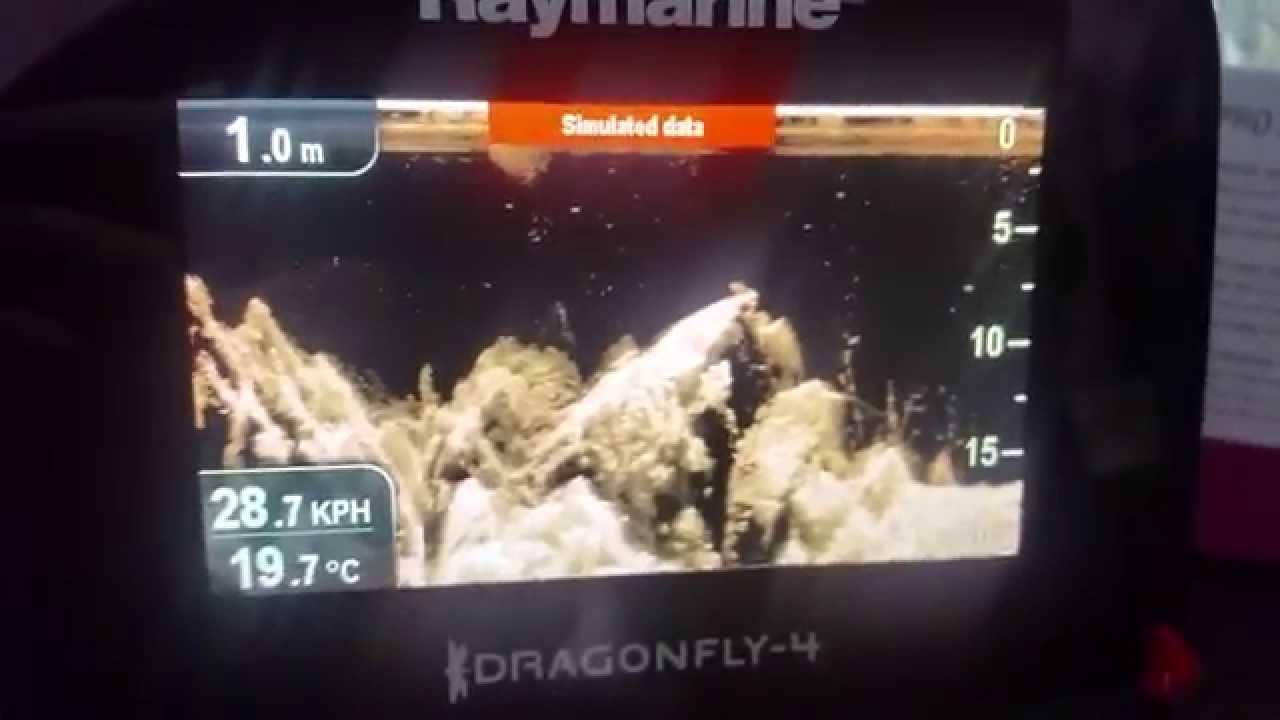 Экспермент - как отображается судак на экране эхолота raymarine .