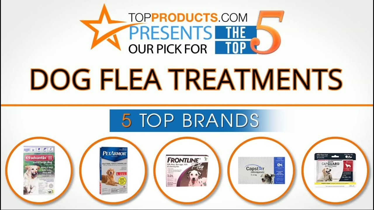 Best Dog Flea Treatment Reviews 2017 How To Choose The Best Dog