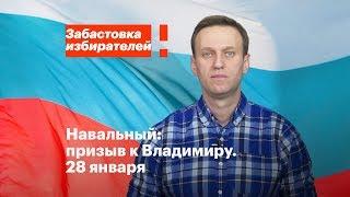 Владимир: акция в поддержку забастовки избирателей 28 января в 14:00