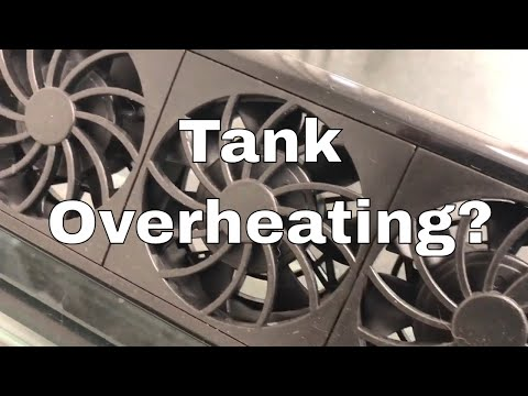 TOP 7 Tips To Keep Your Tank Cool!