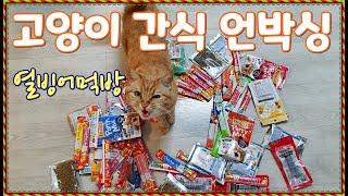 고양이 발렌타인 선물 세트 언박싱, 열빙어 먹방
