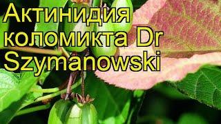 видео Купить Dr.HD SW 515 MS — HDMI свитч 5 на 1 по цене 27 310 руб. в Москве