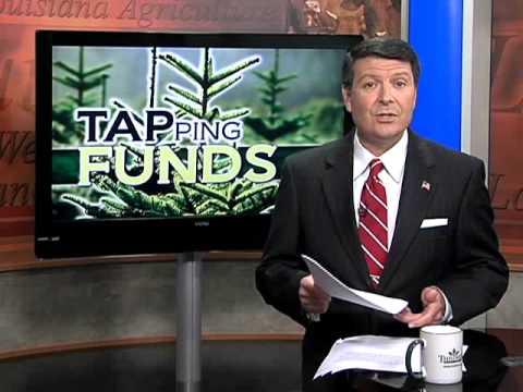 Louisiana Farm Bureau: Orchard Assistance