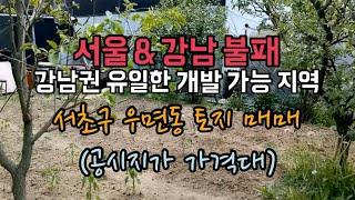 서울 강남 서초구 우면동 토지매매. 서초우면지구. 강남…