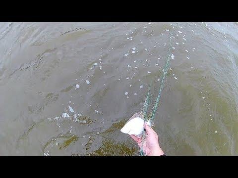 Ловля при отливе