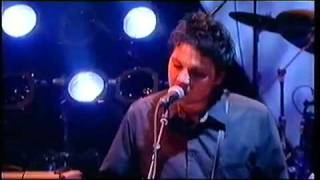 WILCO - I'M THE MAN WHO LOVES YOU (2001)