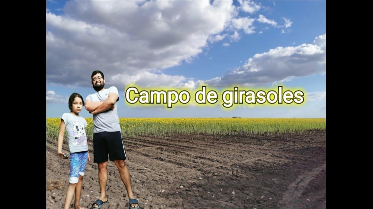 """Adaneo y Maria Belem. """"Aventuras en el campo de girasoles"""""""