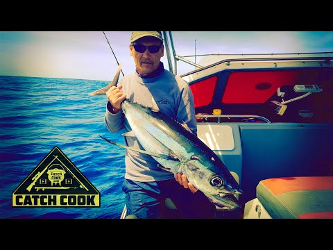 Exciting day fishing in the deep - tuna, kingfish and more - South Africa