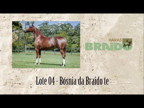 Bósnia da Braido