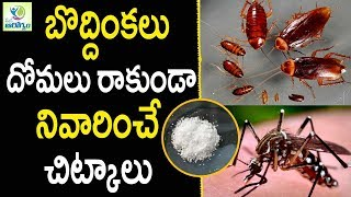 How to get rid of Mosquitoes at Home - Health Tips in Telugu || mana Arogyam