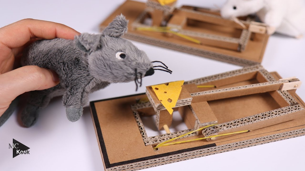 how to put a mouse trap