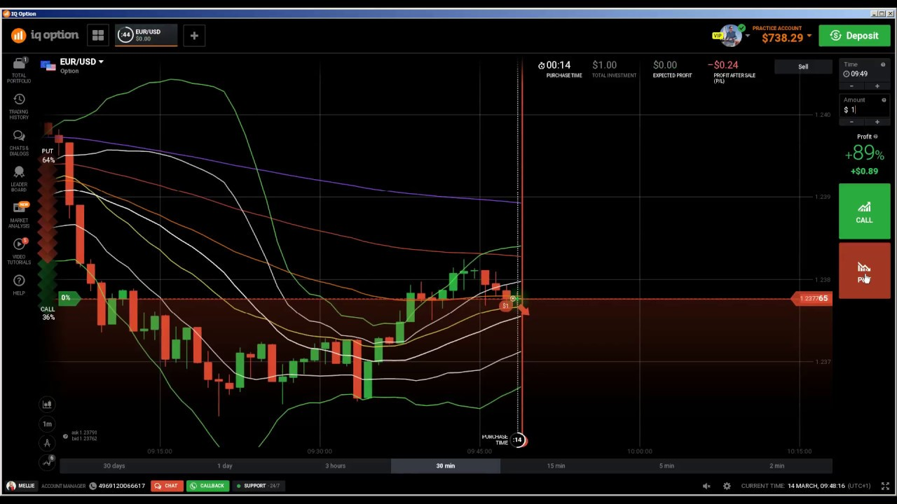Live trading binary options