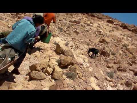 (1046) The Legendary mountain  Jabal Haroun (Mount Aaron)  in Jordan 1