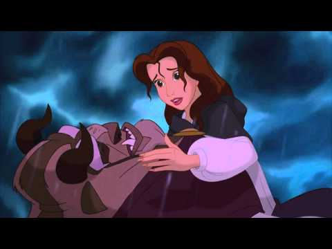 Beauty The Beast Kiss From A Rose