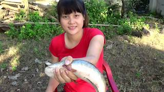 Cooking skills | grilled charcoal fish - primitive life | survival skills. HT