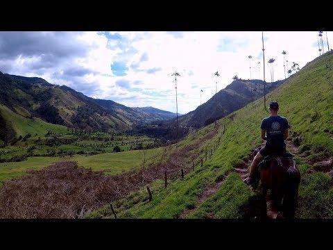 Cocora Valley Colombia + Salento Quindio Nightlife