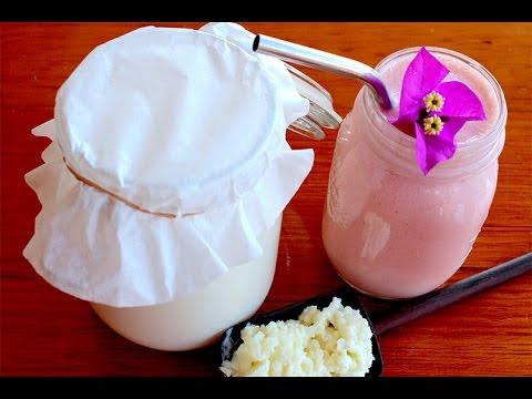 Como hacer kefir de leche casero