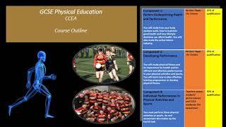 GCSE Sport & P.E