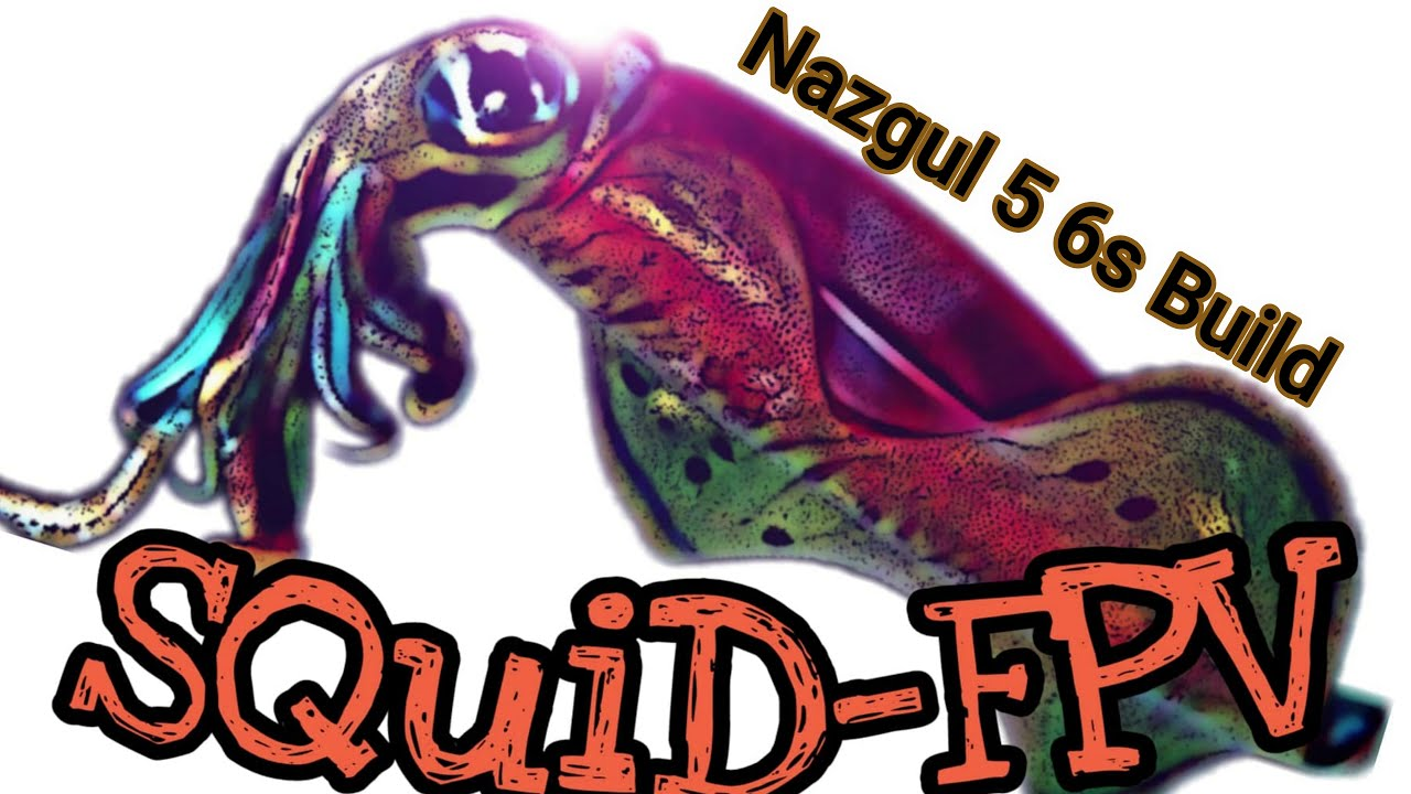 Nazgul 5 - 6s Custom Build FPV картинки