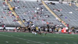 Towson Football holds 5th annual Tiger Bowl