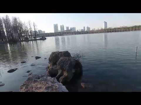 Century Park in Shanghai
