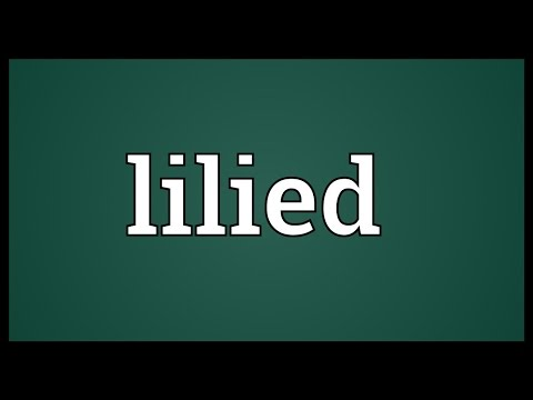 Header of lilied