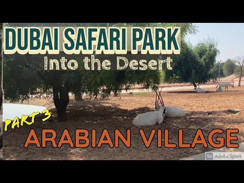 Arabian Desert – Dubai Safari Park 2020