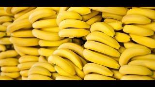 סרטון בונוס - (עוד) משהו שלמדתי על בננות