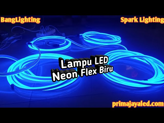 Lampu LED Neon Flex Biru