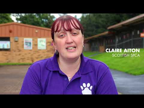 Scottish SPCA's Lanarkshire Rehoming Centre