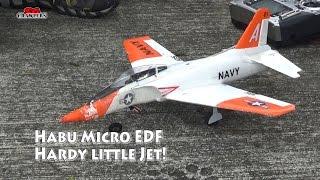 UMX™ Habu S 180 28mm EDF Jet BNF with SAFE® (EFLU4380) Mini EDF Jet hardy little plane!
