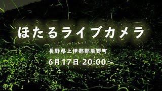 ほたるライブカメラ☆ 長野県上伊那郡辰野町からのほたるの様子をライブ...