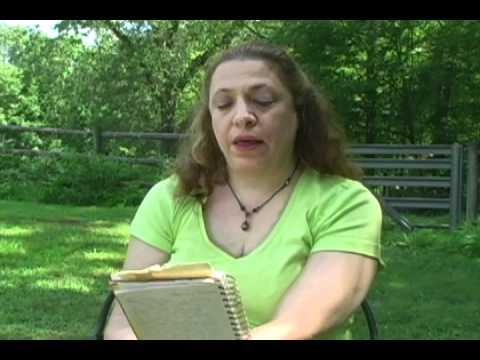 911 Stories: Robyn Bernstein Reads Journal Entry Part 2