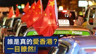 Who truly love Hong Kong?It's easy to tell!  | CCTV
