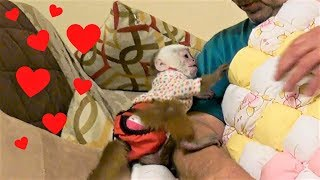 My Baby Monkey Receives an Amazing Gift!!!