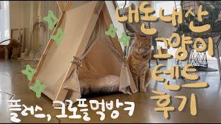 내돈내산 고양이텐트 후기 (+새들러하우스 크로플 먹방)