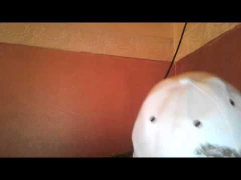 فيديو كاميرا ويب من 21 مارس 2013 220