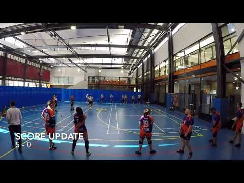 2017 New South Wales Dodgeball League Round 16: Sydney Werewolves V Campbelltown Crushers