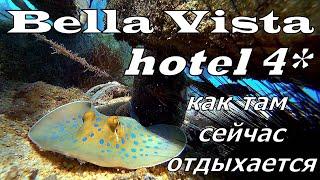 BELLA VISTA 4 Хургада В пик сезона Что с ним не так Обзор отеля Подводный мир отеля