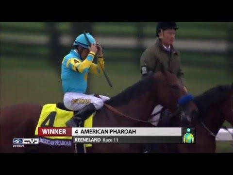 American Pharoah - 2015 Breeders' Cup Classic
