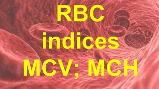 MCV and MCH blood tests