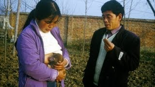 Chinese Woman Breastfeeds Monkeys - Rant
