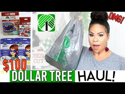 DOLLAR TREE HAUL! What's NEW at the DOLLAR STORE?! BEST FINDS of 2019!