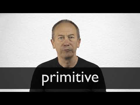 Primitive Definition And Meaning Collins English Dictionary